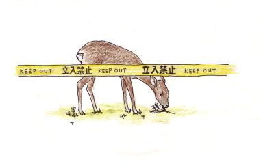 鹿よ読めるか Hey deer, keep out !