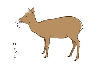 [ 鹿の絵 ] Deer in Nara