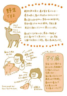 「奈良の鹿案内」一部。
