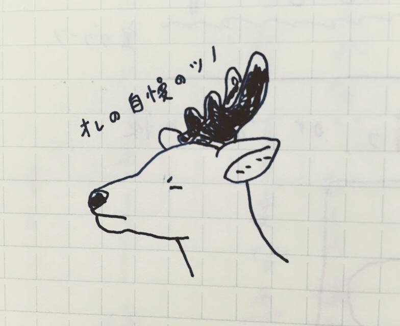 [ 鹿の連載 ]  鹿の角!!!・A deerhorn