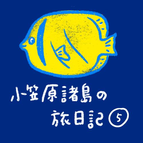 [船旅日記] 小笠原諸島!その5   自然の宝庫だ編